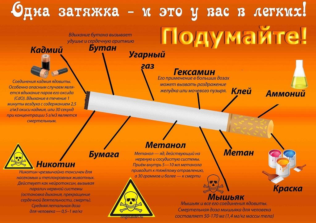 Здоровый образ жизни вред алкоголя и табачных изделий мегаполис купить сигареты оптом в